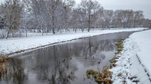 Чернігівський фотохудожник присвятив зимі персональну виставку