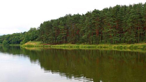 Ландшафтний парк у Чернігові хочуть прибрати до своїх рук
