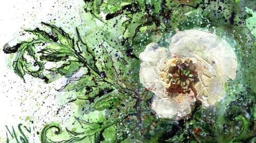 Презентація збірки творів літературної школи «Цвіт папороті»