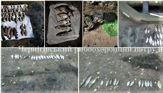 Чернігівський рибоохоронний патруль не дрімає
