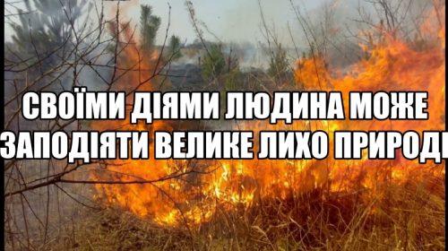 Людина може зберегти ліс, а може й знищити