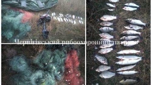 Неподалік Чернігова затримали порушників з 12 кг риби