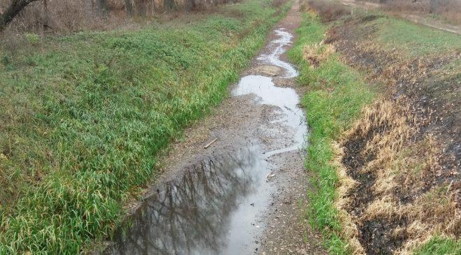 Притока Десни – Остер – перетворюється на мертву річку