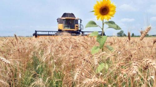 Про розвиток фермерства на Донбасі розповів господарник
