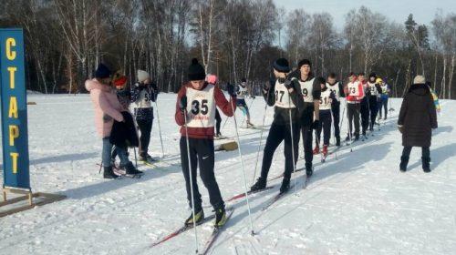 Загарбати приватникам спортивно-лижну базу у Чернігові не вдалося