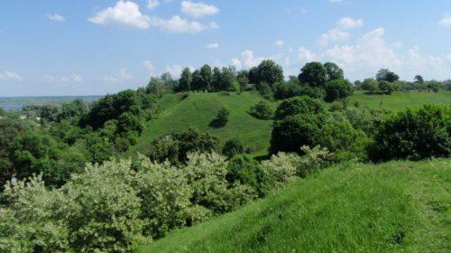 Земельну ділянку вартістю 6 мільйонів гривень повернули громаді