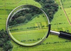 У чому суть змін до законопроекту про ринок землі?