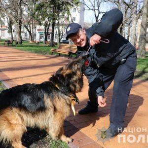 Кінолог-поліцейський розповів про методи навчання службових собак