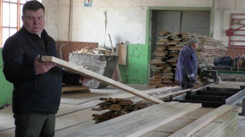У Борзнянському лісовому господарстві впевнені: вихід – у переробці!