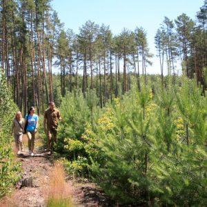 Об'єктивно висвітлювати проблеми лісівників