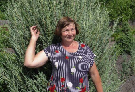 Лісорозсадник у Городні – екзотичне місце на Чернігівщині
