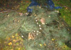 22 тисячі гривень сплатять браконьєри за незаконно добуту рибу