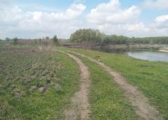 Звільнити захоплену земельну ділянку біля річки вимагає прокурор