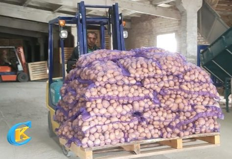 Чернігівщина: сортувальна лінія для картоплі — місцевого умільця
