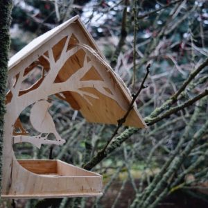Семенівські школярі допоможуть птахам перезимувати