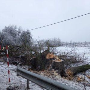 На Чернігівщині відновлюють відключену через ожеледь електрику