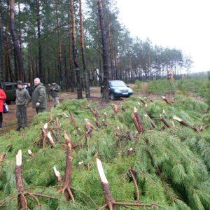 Чернігівські лісівники затримали «новорічних» порушників