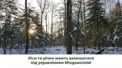 Таке рішення Уряду призведе до занепаду лісів і річок!