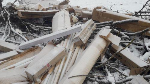 Звалище відпрацьованих ртутних ламп ліквідували на Чернігівщині