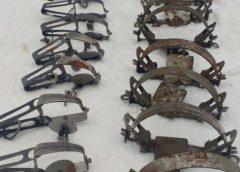 Сімнадцять капканів вилучили на Чернігівщині