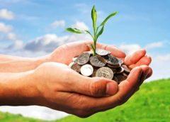 16 млн грн податків сплатили на Чернігівщині для збереження довкілля