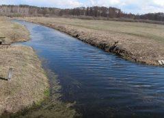 Невже звичайна річка скоро стане дивним об`єктом?
