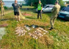 Прикордонники виловили браконьєрів з трофеями